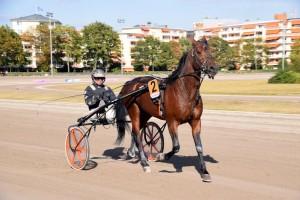 Nur die besten Pferde und Fahrer waren beim Breeders Crown in Mariendorf dabei.