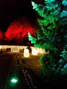 Kugeln, Sterne und bunte Lichter verzaubern den Botanischen Garten.