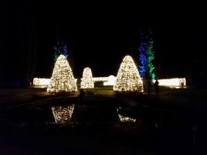 Besucht doch selbst einmal den Christmas Garden!