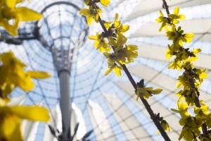 Die Glashäuser werden bunt bepflanzt. Foto: Renata Chueire