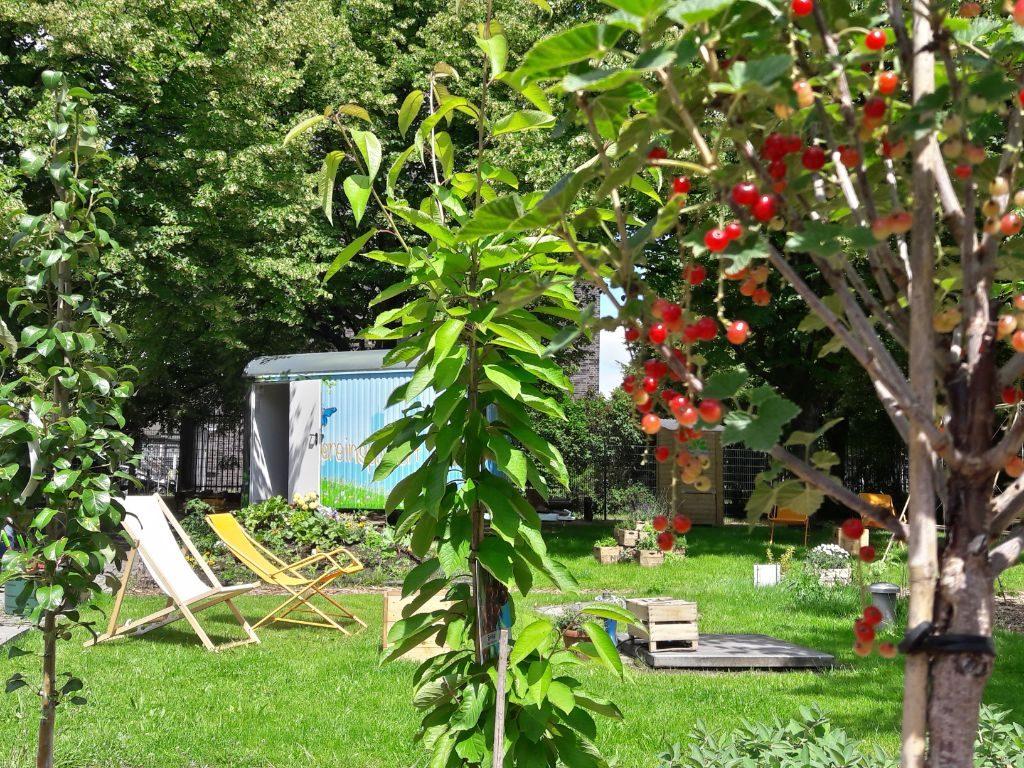 Urban Gardening: Die Stadtgärten sind grüne Oasen für alle.