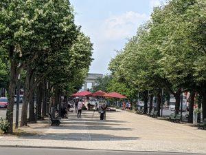 Der Boulevard Unter den Linden ist auch wegen seines Straßengrüns für Berlin von besonderer Bedeutung.